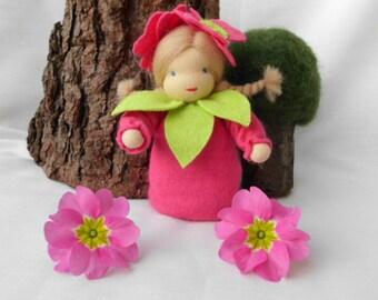 Primrose - flower child