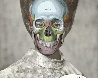 Original Artwork, Lowbrow Art, Macabre Wall Art, Creepy Human Skull Art, Paper Collage, Weird Wall Decor, Anatomical Art