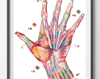 Hand Muscles Anatomy Art Print Hand and Wrist Muscles and Ligaments Watercolor Poster Orthopedy Illustration Hand Surgery Wall Decor