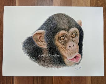 Chimpanzee Fine Art Print, Illustration, Animal