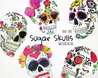 Watercolor Sugar Skulls Clipart, Cinco de Mayo Clipart, Mexican Skulls, Sugar Skull Clipart, Mexican Clipart, Day of the Dead, Sugar Skull