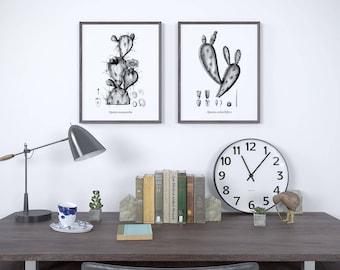 Black and white art, Botanical print black and white, Black and white illustration, Cactus print, Set of prints, Instant download art, JPG