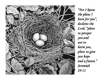 Bird nest with scripture