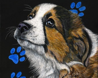 English Shepherd Puppy scratchart print -DIxieDawn