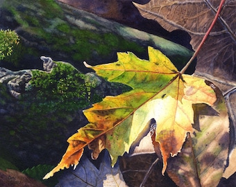 Autumn Leaf Art Watercolor Painting Print by Cathy Hillegas, 8x10  autumn art, watercolor print, maple leaf art, woodland art, yellow