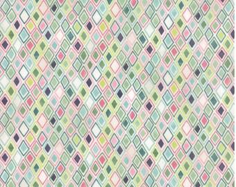 Sale Fresh Cut 1 1/2 yards  fabric by Basic Grey by Moda fabric 30395 11