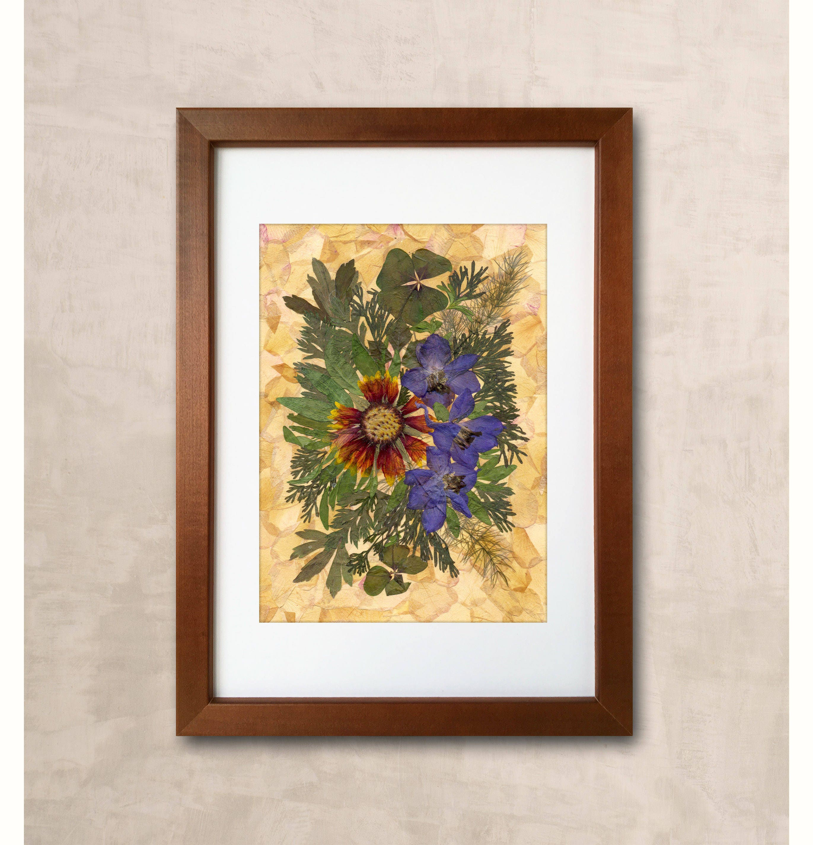 Gaillardia Pressed Flower Art Dried Flowers Pressed Flower