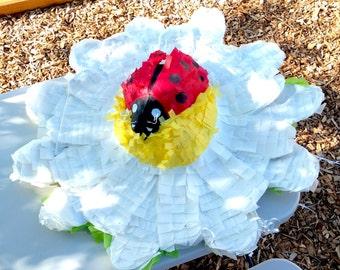 Ladybug on a White Daisy Piñata