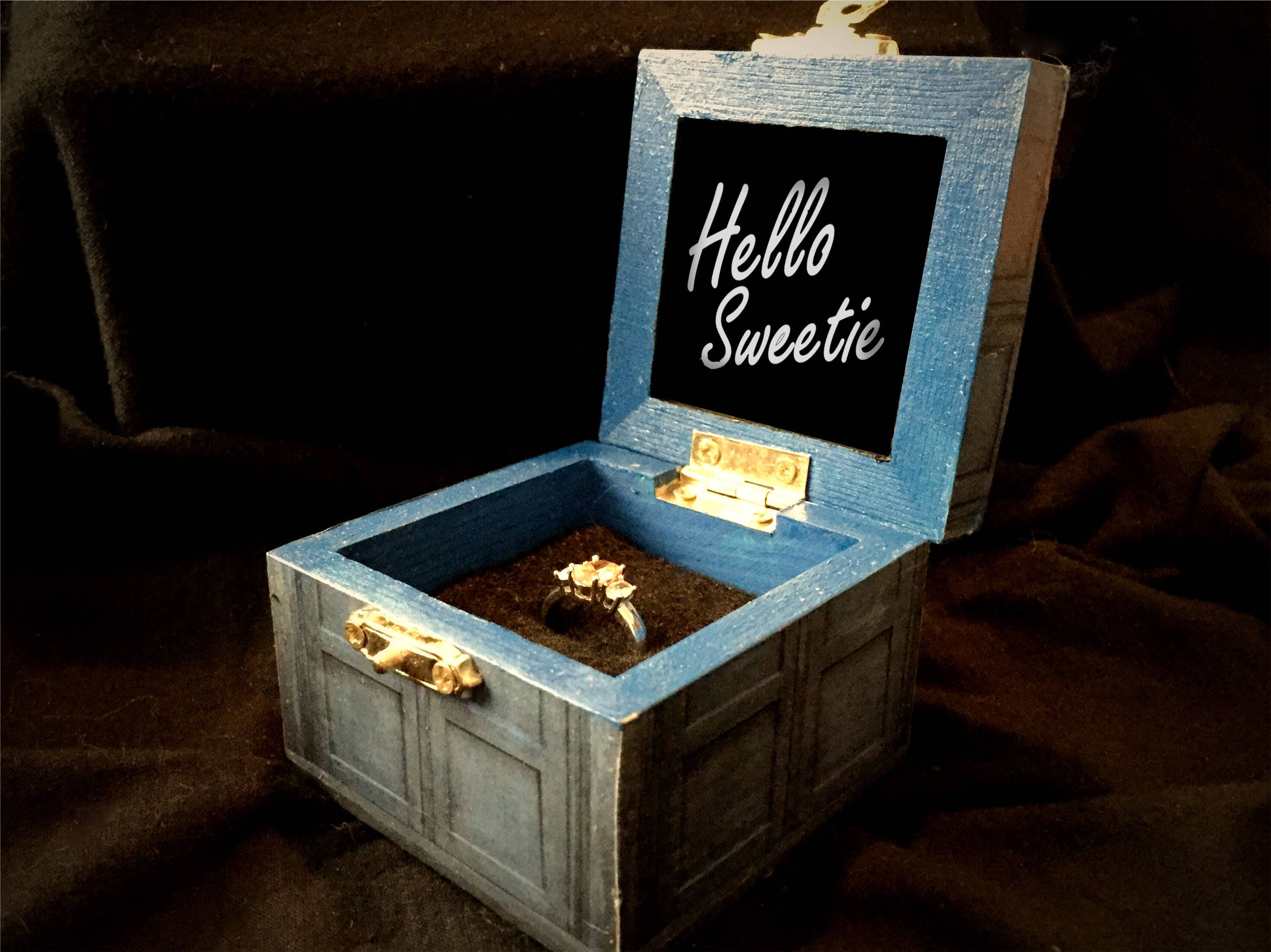 Tardis Doctor Who TIme Lord Inspired Proposal Engagement Ring Box