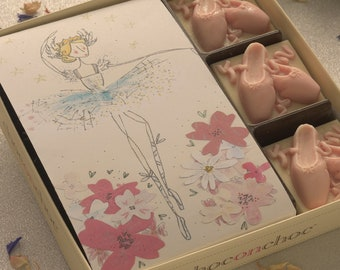 Chocolate Ballet Shoes