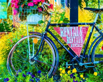Garden Bicycle Print