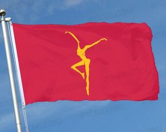Dave Matthews Band DMB Firedancer Flag