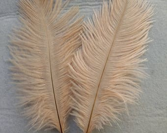 "Ostrich Feathers x 5 Soft Salmon 6""- 8"" / 15 - 20 cm  FREE UK Postage"