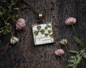 Clover pendant | Botanical Nerdy necklace | Real Pressed clover jewelry | nerdy gift idea for nature lovers | Botanical specimen jewelry