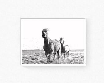 Horse print, horse wall art, animal print, horse poster, horses, running horses, horse photography, animal wall art, scandinavian wall art