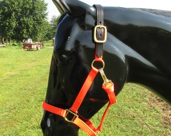 Horse Halter with leather crown