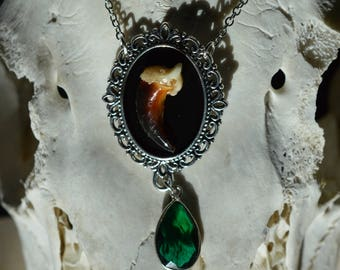 Coyote Claw and Emerald Necklace