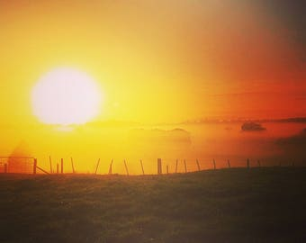 Nature - Photography - New Zealand - Sun
