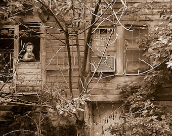 Boy in abandoned home