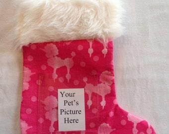 210 Pink Poodles Pet Stocking