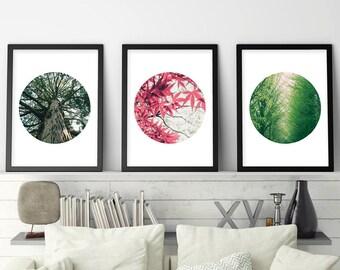 Botanical Print Set, Botanical Prints, Set of 3 Prints, Botanical, Print Set, Downloadable, Poster, Tree Print, Printable, Digital, Wall Art