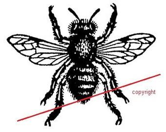 Vintage bee - Temporary tattoo