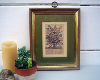 Vintage Botanical Artwork ~ Mid Century Plant Illustrations ~ Vintage Flora and Fauna by Month Prints ~ Horticulture Gift for Her or Him