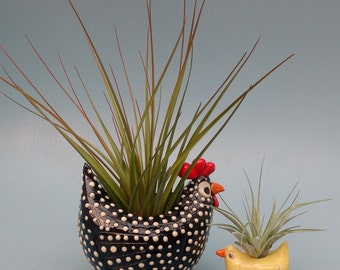 Mother Hen and Baby Chick, Air Planters, Succulent Planters, Chicken Lovers, Mother's Day