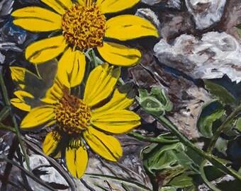 Daisy Farmhouse Wall Decor, Canvas Art Floral, Contemporary Wildflower Wall Art, Original Painting Wildflowers