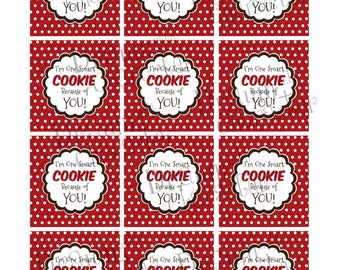 Gift Tags, Cupcake Topper Circles Set of 12- I'm One Smart Cookie Because of YOU! Printable- PR55-OSCTAG