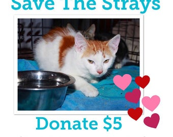 Donation to Save The Strays