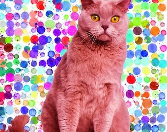 Cat Personalised Portrait _ Custom cat Portrait _ Custom pet portrait _ Choose your background