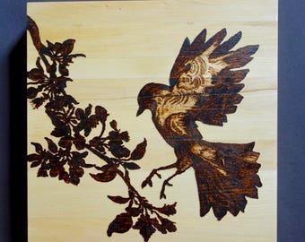 Mockingbird landing