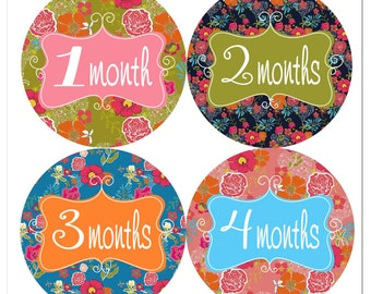 Floral Monthly Baby Stickers Milestone Stickers Monthly Stickers Girls Flower Milestone Stickers New Baby Gift Baby Girl Round Stickers