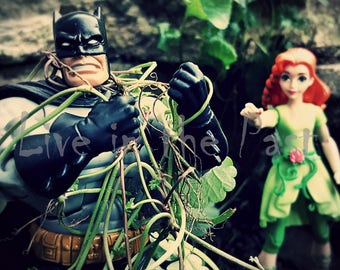 Batman vs. Poison Ivy 8x10 photo print