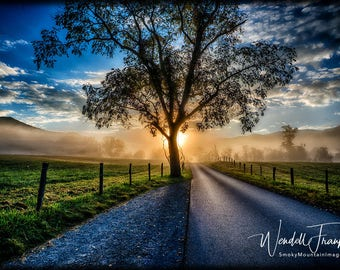 Daybreak in Cades Cove (Great Smoky Mountains National Park) E146