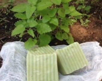 Green Citrus Soap