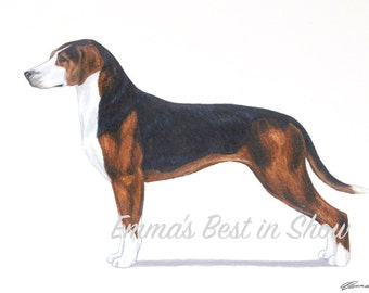 Hamiltonstovare Dog - Archival Fine Art Print - AKC Best in Show Champion - Breed Standard - Foundation Stock Service - FSS Breed