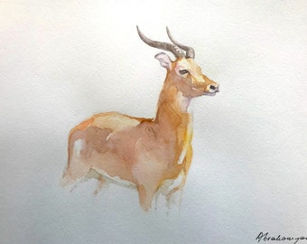 White-tailed Deer Watercolor Handmade painting, signed