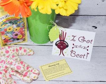 Gift Card - I Got The Beet - Card - Music - Vegetarian - Greeting Card