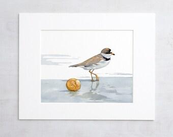 Shorebird and shell watercolor print, beach art painting