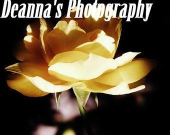 Flor de la sombra amarilla por Deanna Bernal