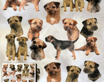 Border Terrier Dog Gift Wrapping Paper with matching Gift Card