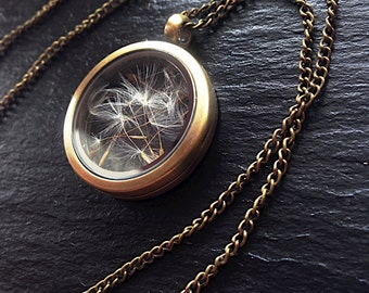 bronze glass locket with real Dandelions seeds