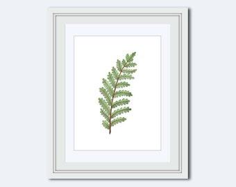 Modern wall decor - fern leaf print - Botanical Print - leaf Wall Art - leaf decor - wall art print- Printable Art - printable wall decor