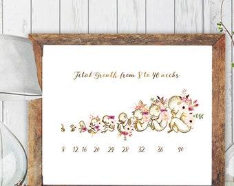 Midwife Graduation Gift, Doula Gift, Gynecology Art, Obgyn Nurse Gift, Midwife Art, Pregnancy Art Print, Medical Print, Obgyn Office Decor