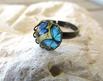 Butterfly ring glass cabochon ring butterfly cabochon ring adjustable ring bronze ring blue and yellow ring boho hippie ring gift for her.