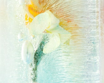 Abstract Art Print on WaterColor Paper: Limited Edition Happiness ArtWork Various Sizes  Small Extra Large Botanical Art Wall Decor