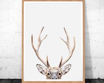 Deer Antlers Print, Deer Print, Deer Wall Art, Animal Print Nursery, Antlers Art Print Deer Head, Deer Antlers, Nursery Decor, Deer Poster