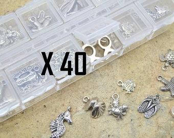 40 x Pearl charm assortment mix Sea Beach was ocean fish + kit box plastic storage